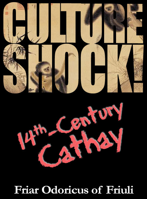 Culture Shock Parody Cover